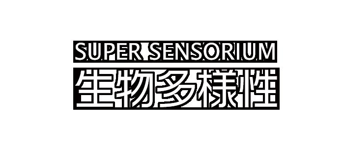 SUPER SENSORIUM