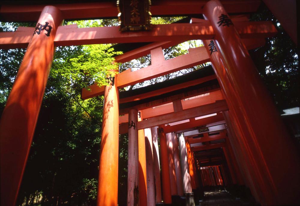 京都伏見稲荷大社。稲荷は日本の神であるが仏教の荼枳尼天(だきにてん)と同一視された。